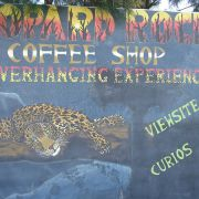 LeopardRockCafe